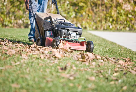 Mowing of Lawns, Lawn maintenance
